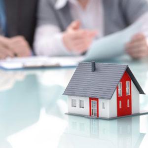Real Estate Consultation